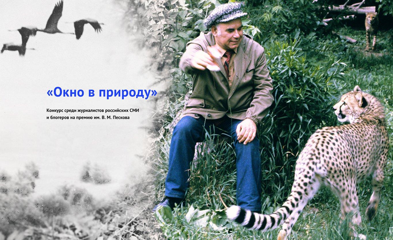 Картинки природы комсомольская